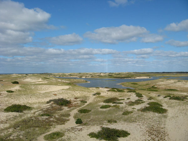 Enjoy the stunning beauty of Cape Cod National Seashore from