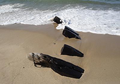 Shipwreck remains